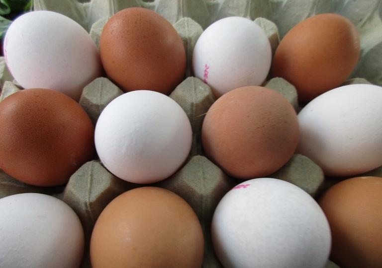 Hofladen-Eier