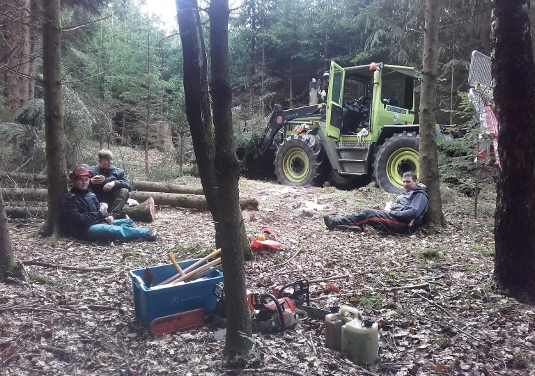 Wald / Brennholz / Hackschnitzel